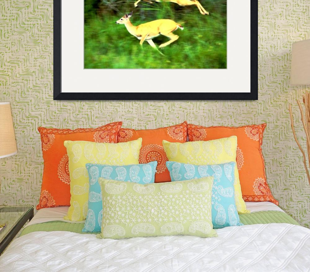 """""""Two white tailed deer running&quot  (2010) by bandtdigitaldesigns"""
