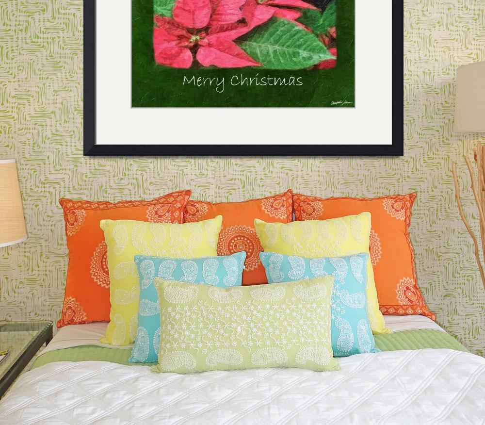 """""""Pink Poinsettias 4 Painterly - Merry Christmas&quot  (2009) by ChristopherInMexico"""