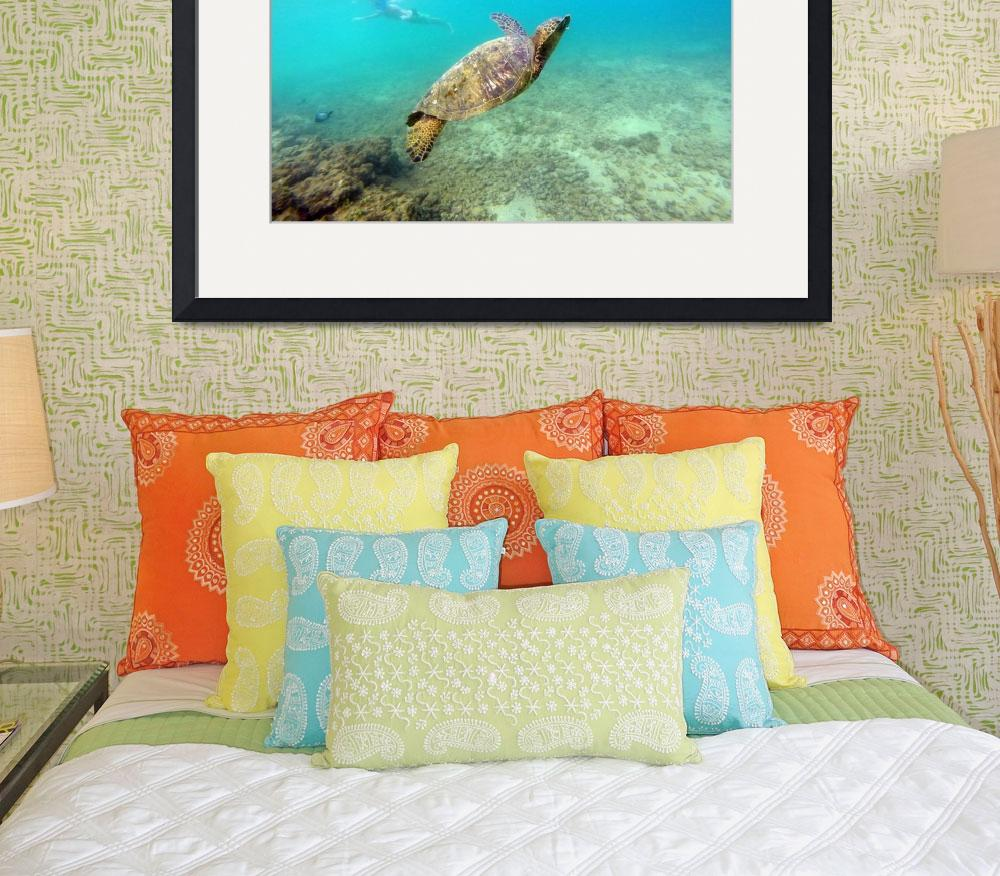 """""""Moments with green sea turtles&quot  by Hawaiian-Prints"""