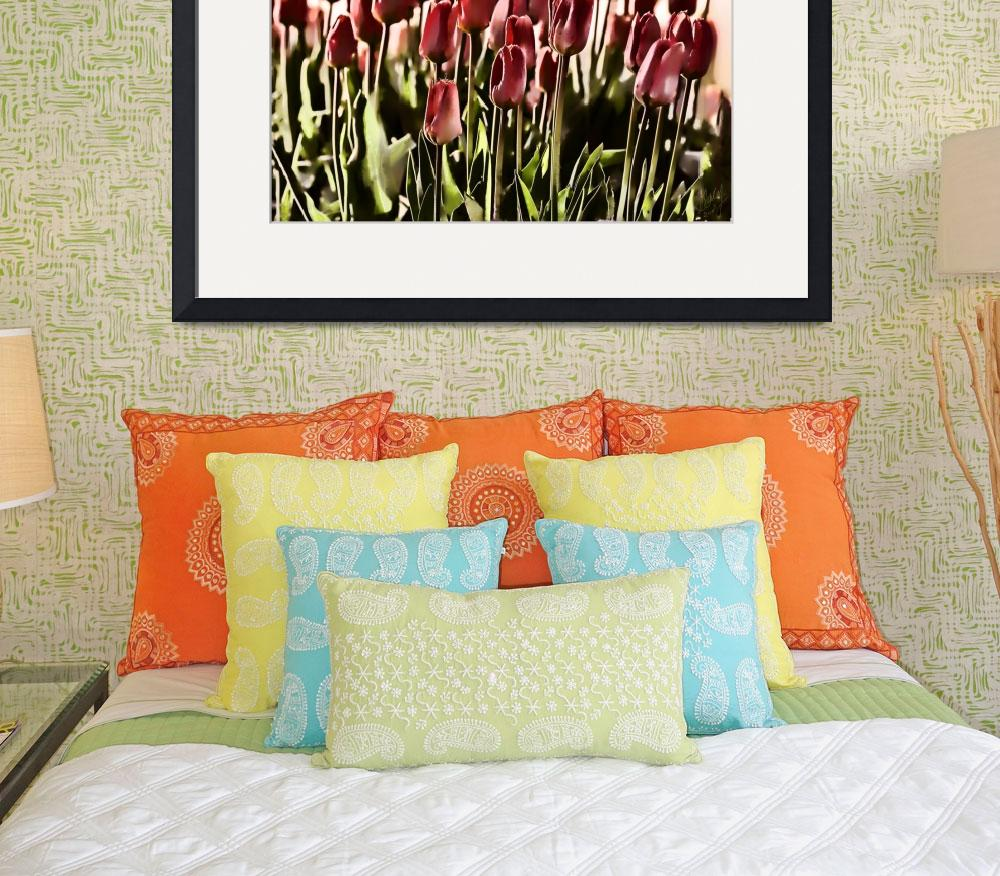 """""""Melon Tulips&quot  (2007) by GraceyStinson"""