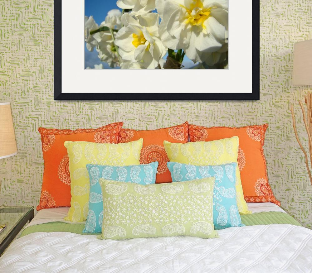 """""""Narcissus FLOWERS 7 Spring Garden Flower Art Cards&quot  (2009) by BasleeTroutman"""