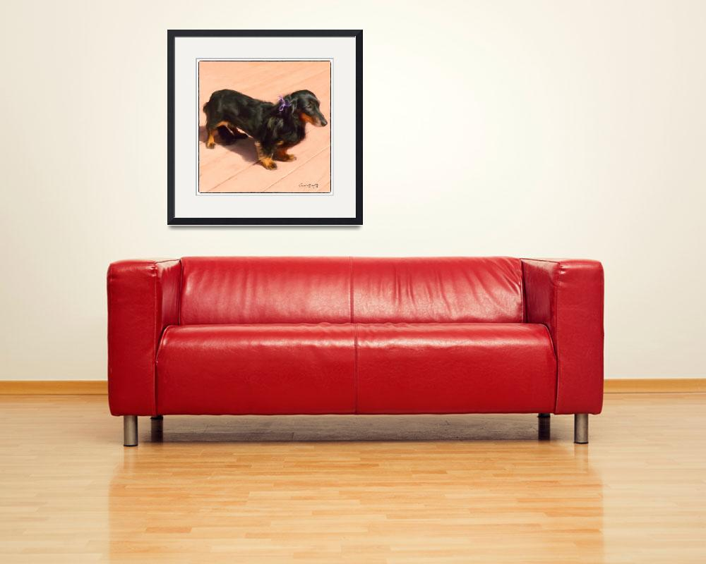 """DOLLED UP DACHSHUND&quot  (2012) by shaynaphotography"