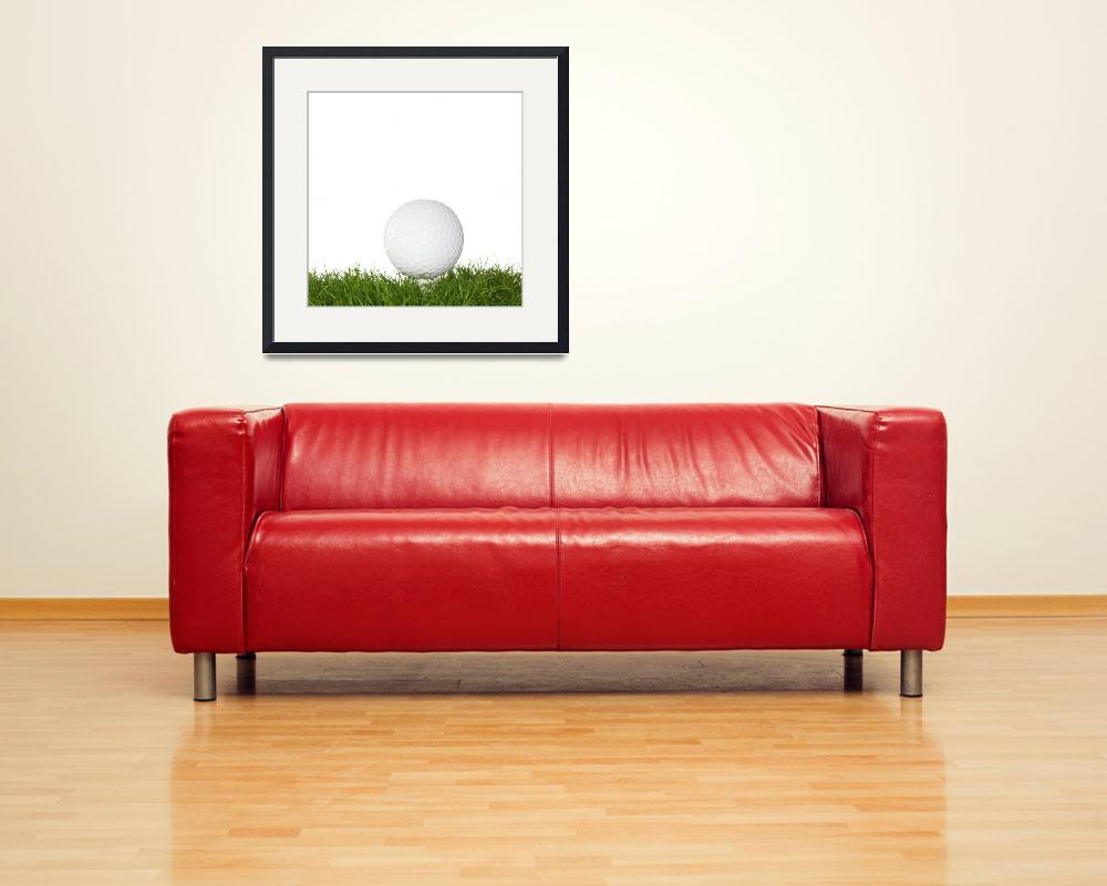 """A golf ball in the grass.&quot  (2008) by Piotr_Marcinski"