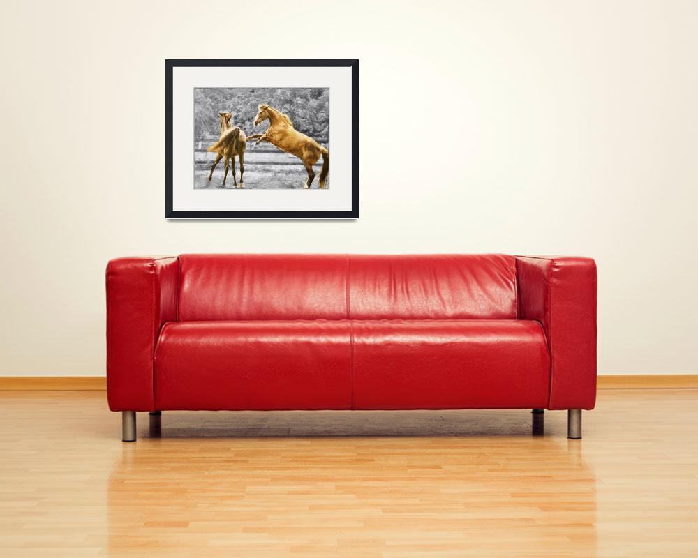 """""""~Horse Play~""""  (2012) by barbee"""
