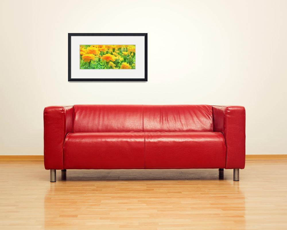 """""""Marigolds&quot  (2013) by charker"""