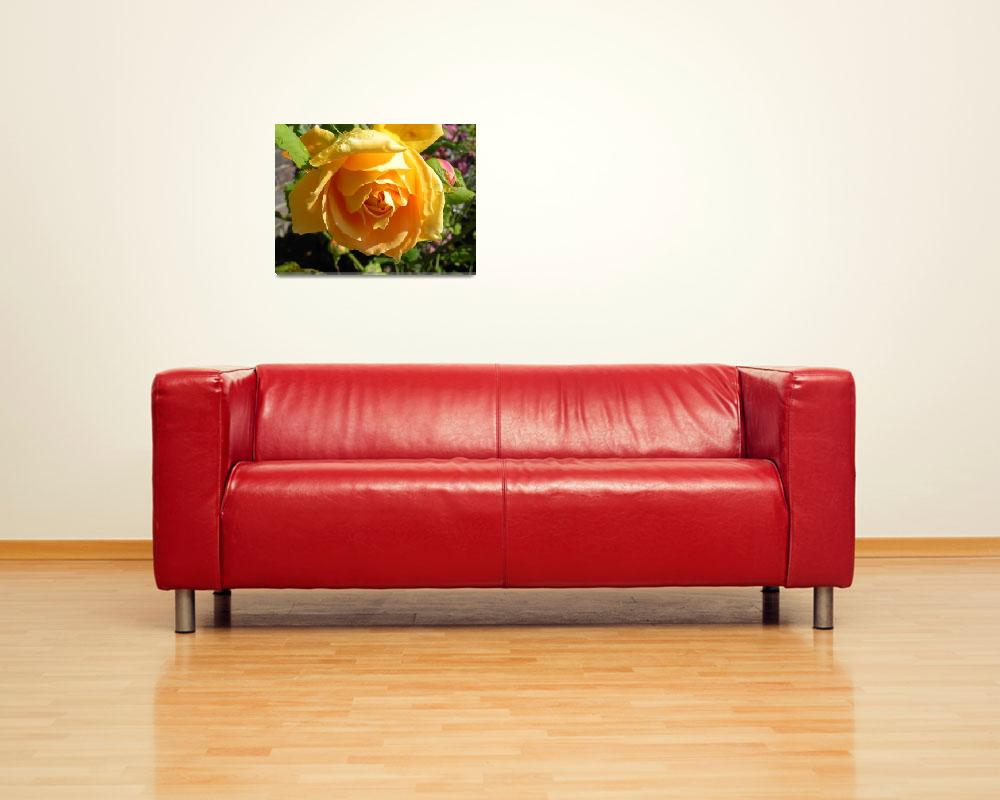 """""""Yellow Rose&quot  (2010) by PettProjects"""