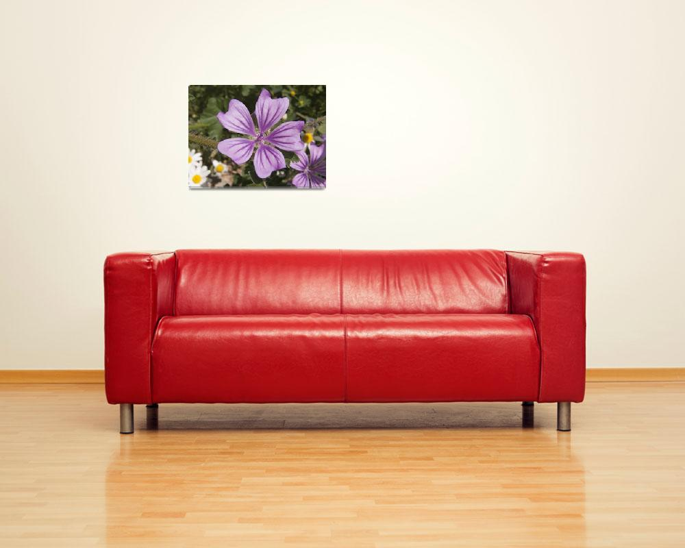 """""""Flor violeta""""  (2009) by Duende"""