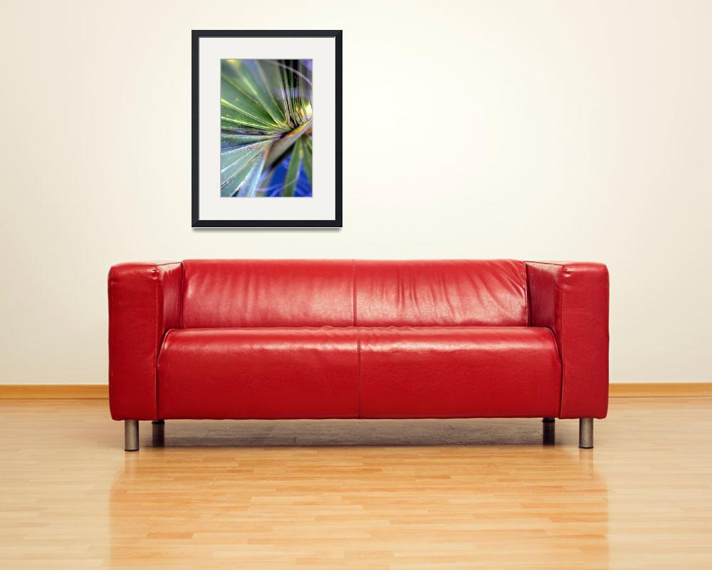 """""""Palmetto Fantasy&quot  (2008) by PhotoGal"""