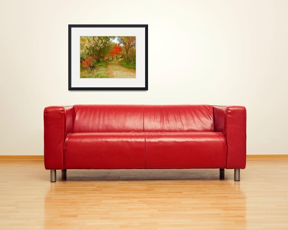 """Photography Art Of Autumn Season Colors&quot  by artsandi"