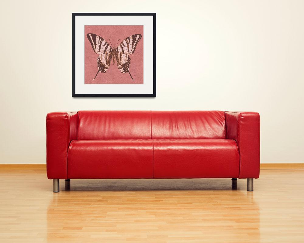 """""""Varughese Art Collection Framed Print&quot  by buddakats1"""