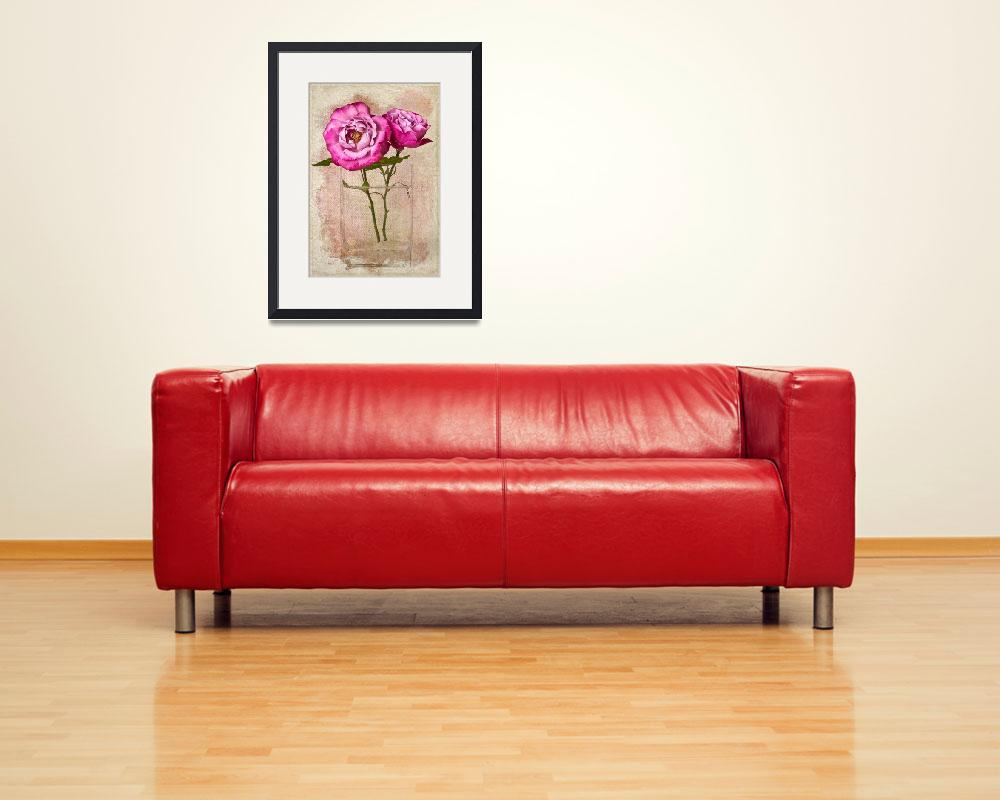 """""""Roses Muriel Robin""""  (2011) by LeslieNicole"""