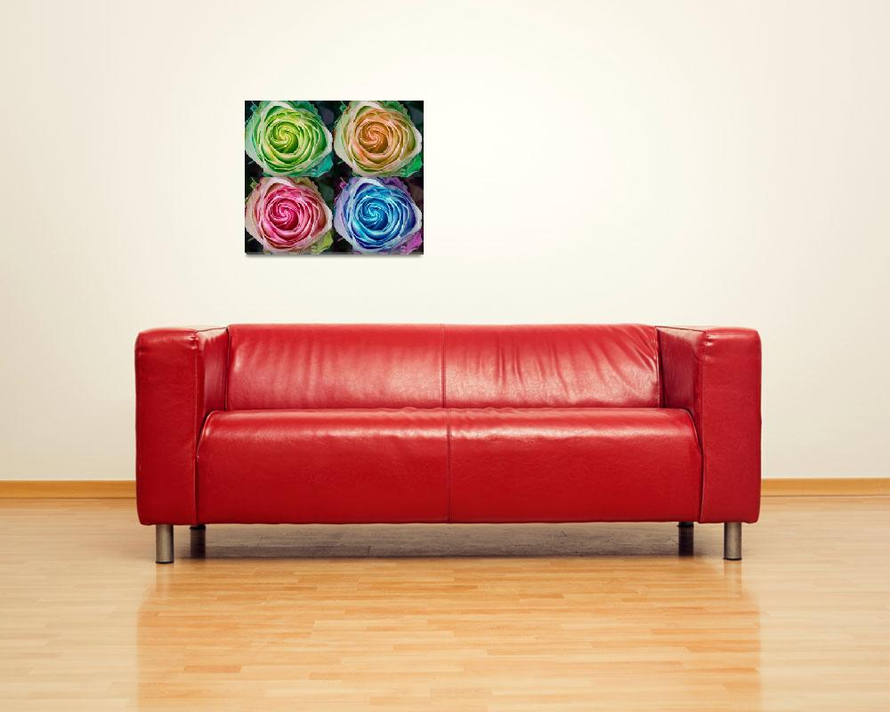 """""""Colorful Rose Spirals&quot  by lightningman"""