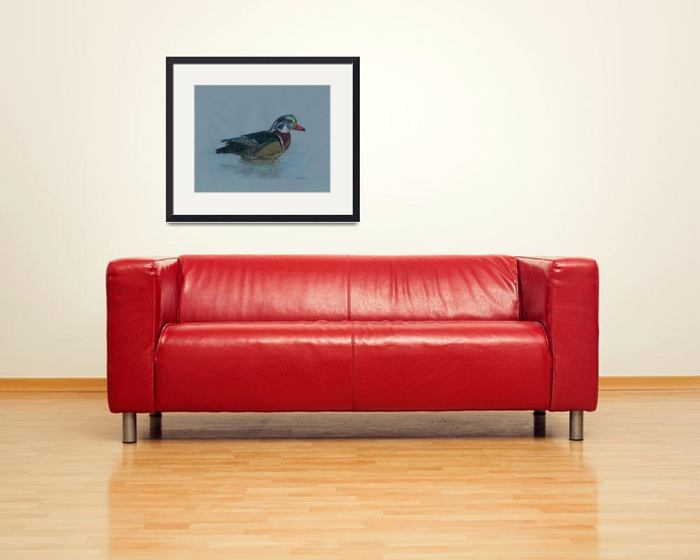 """Wood Duck in a Pond&quot  (2008) by creativebrains"