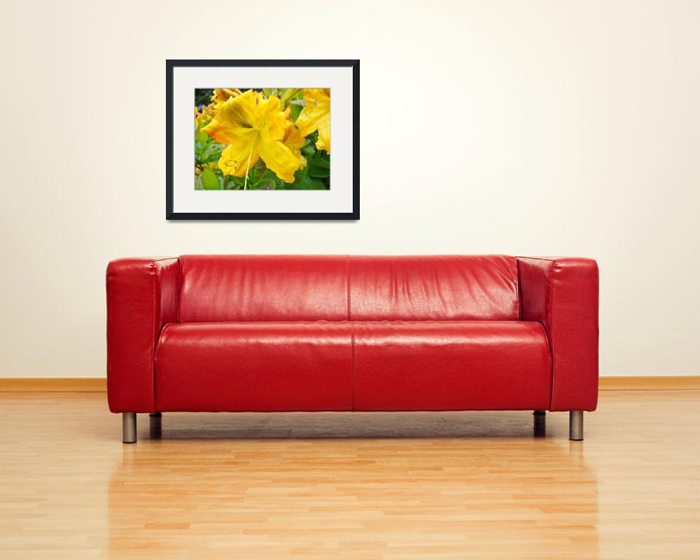 """OFFICE ART Prints AZALEAS Baslee Troutman&quot  (2009) by BasleeTroutman"