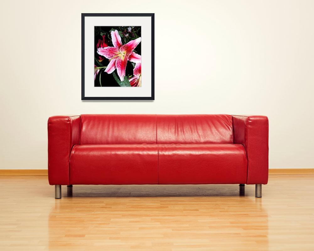 """""""Single Orchid&quot  (2008) by RominasArt"""