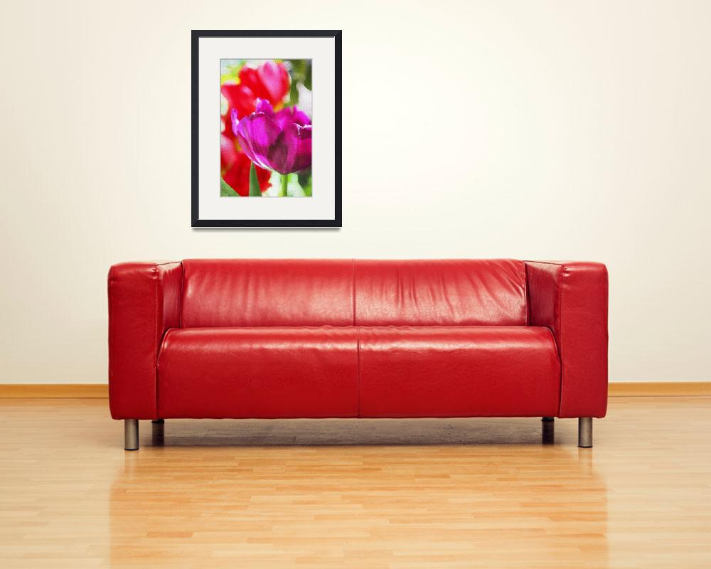"""""""Red tulips&quot  by Aneri"""
