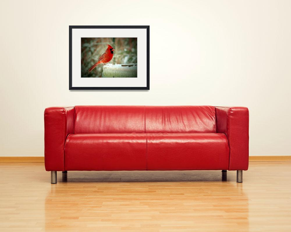 """""""Winter Cardinal - Oil Painting Effect&quot  (2009) by 1blessedmom"""