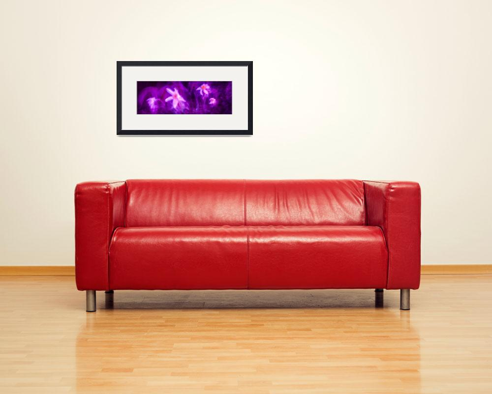 """""""flowers on purple background""""  (2014) by pablodesign"""
