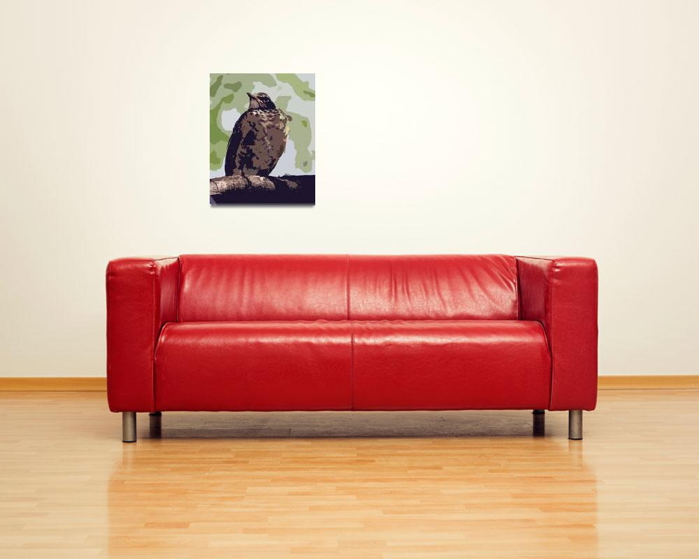 """""""Young American Robin&quot  (2010) by ROBERTSCOTTPHOTOGRAPHYY"""
