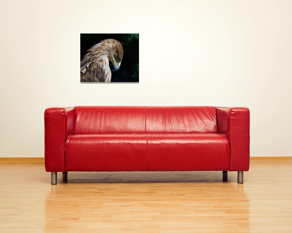 """Sad Eagle""  (2009) by IgorDrankin"
