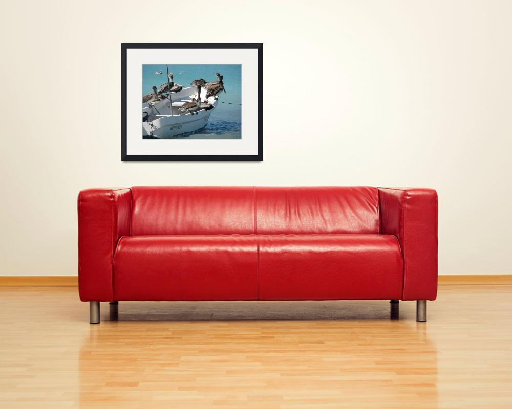 """""""pelicans feeding on a fishing boat&quot  (2010) by Maly"""