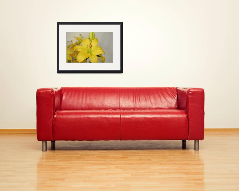 """""""Bright Yellow Lily&quot  (2016) by katrina086"""