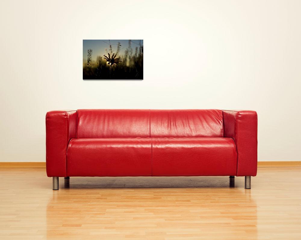 """The Sunset""  (2008) by jmamona"