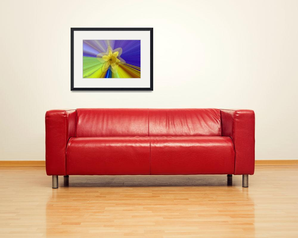 """Daffodil Dreams""  (2008) by NatureBoyPhotos"