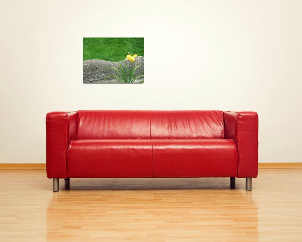 """Simplicity""  (2006) by SadieC"