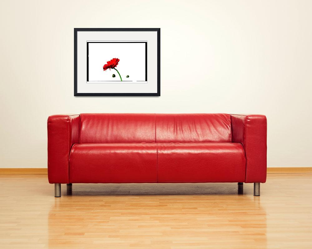 """""""Red Flower""""  (2012) by 2DogsDesign"""