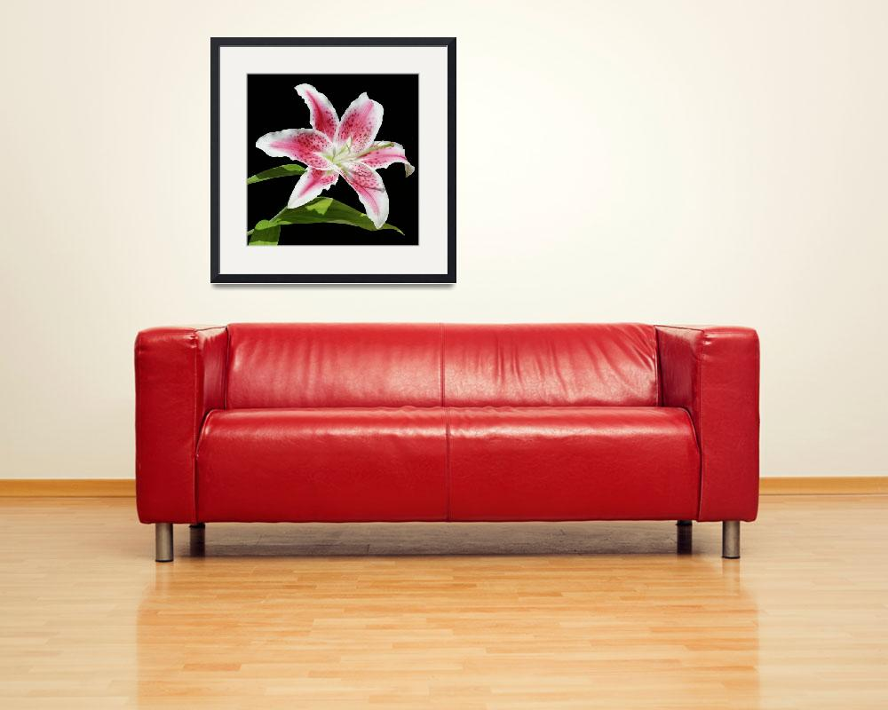 """""""Stargazer Lily&quot  (2010) by SharpArt"""