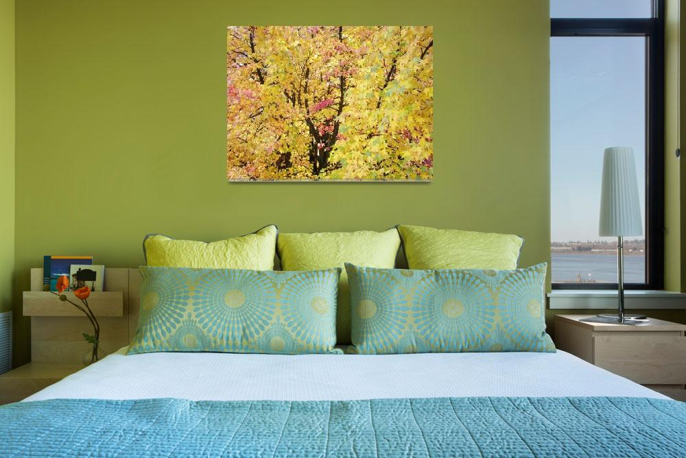 """Yellow Tree Autumn Leaves Fall Trees art prints na""  (2013) by BasleeTroutman"