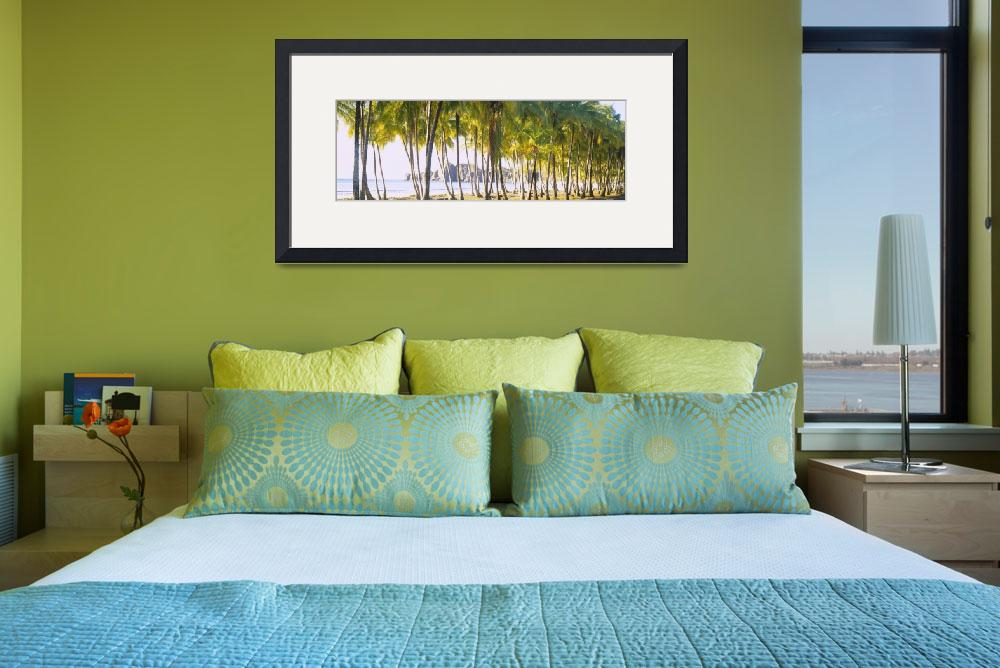 """""Palm trees on the beach, Carrillo Beach, Nicoya P""  by Panoramic_Images"