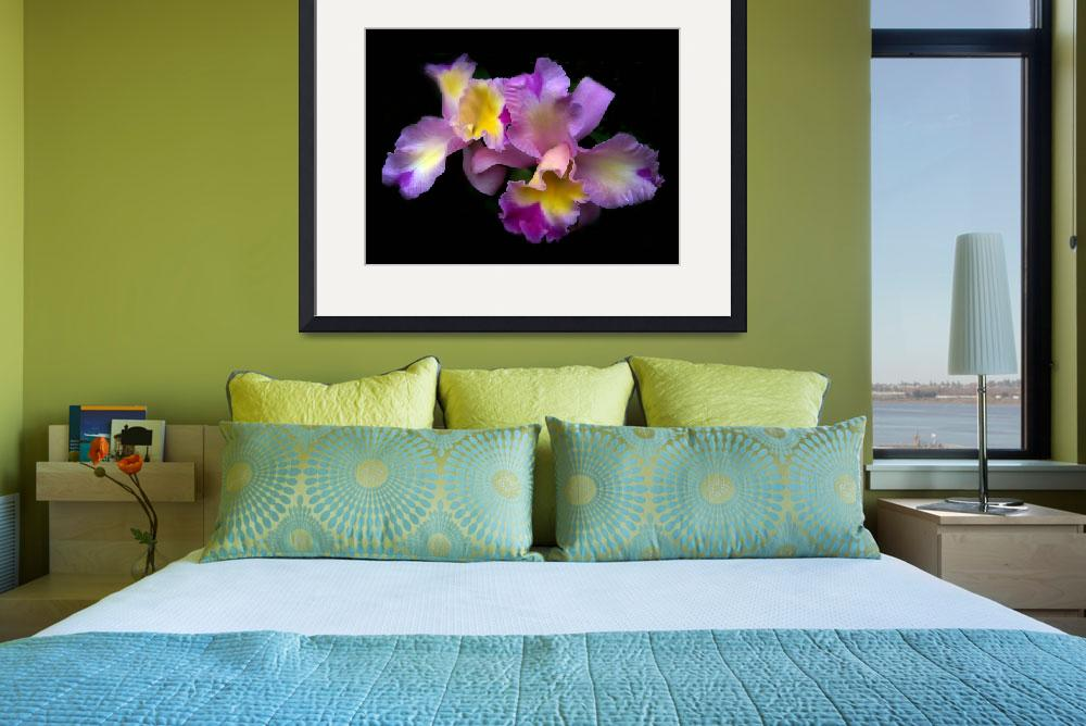 """""""Orchid Embrace&quot  (2009) by JessicaJenney"""