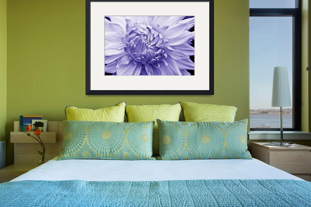 """""""Overlapping Dahlia Petals (Purple)""""  (2014) by RussMartinPhotography"""