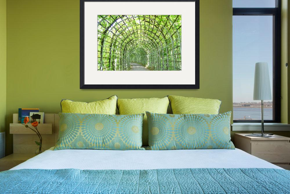 """""""Vine-Covered Archway&quot  by vicki"""