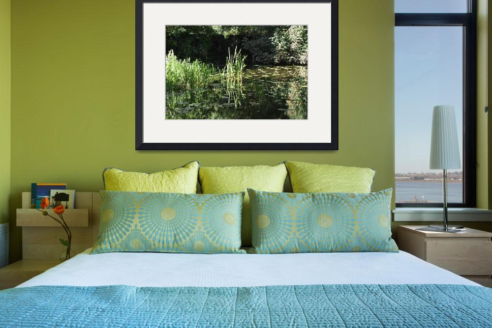 """""""Reeds and Lily Pads, Calke Park&quot  (2012) by rodjohnson"""