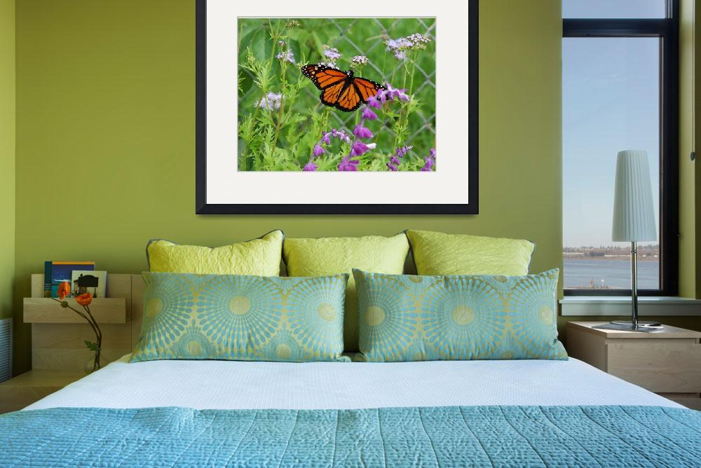"""""""Monarch Butterfly-14x18""""  by LindaWolff"""