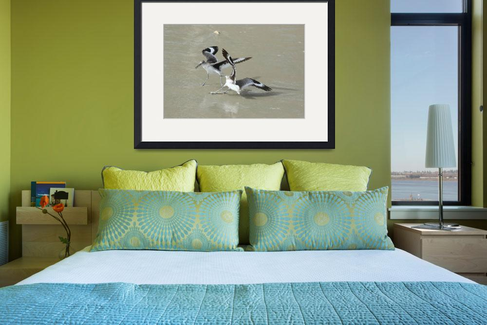 """""""Willets at the Beach&quot  (2015) by DBenoit"""