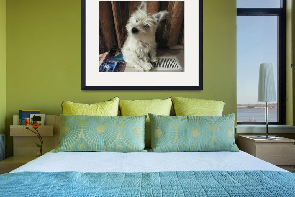 """""""Curious Miss Daisy - West Highland White Terrier&quot  by artsandi"""