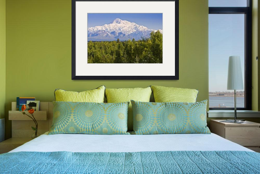 """Southside view of Mt. Mckinley Summer, Southcentra&quot  by DesignPics"
