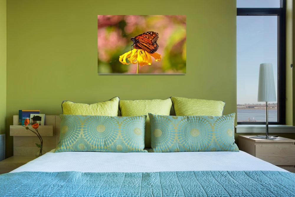 """""""Butterfly Monet&quot  (2011) by julieandel"""