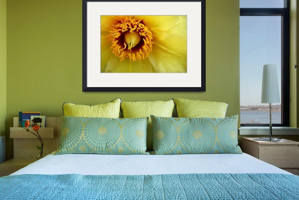 """""""Yellow Clematis&quot  (2010) by BranchDesign"""