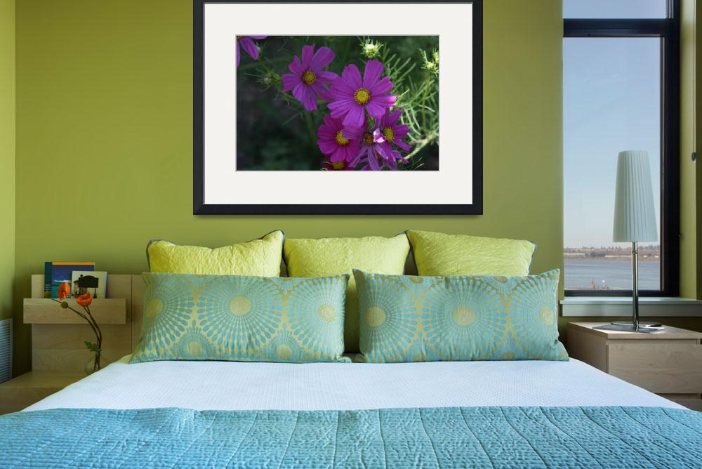 """Purple Flowers In Shade&quot  (2008) by JBCPhotoDesign"