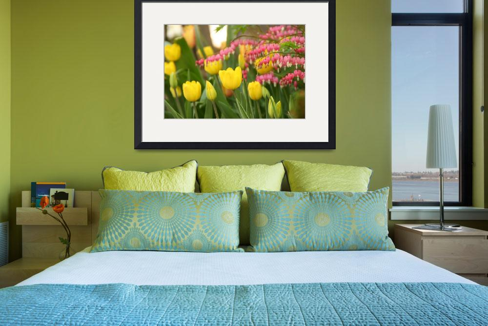 """""""Yellow Tulips and Bleeding Hearts&quot  by AndreaMoorePhotography"""
