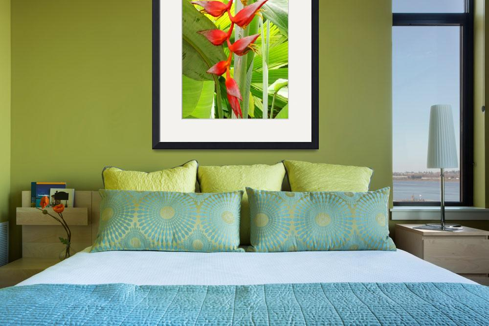 """Heliconia and palms 2&quot  by stephenbmack"