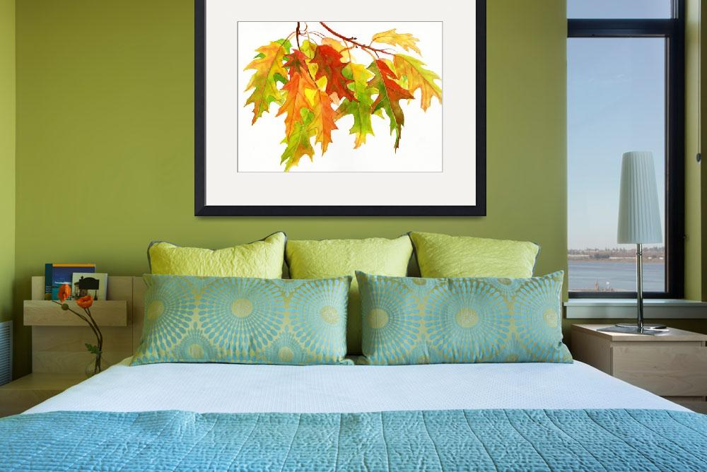 """""""Fall Oak Leaves (white background)&quot  (2011) by Pacific-NW-Watercolors"""