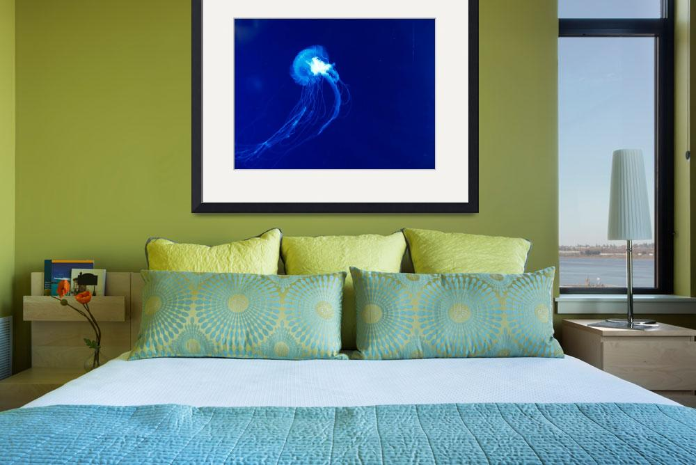 """""""Ghostly Jellyfish""""  (2011) by MikeMBurkeDesigns"""
