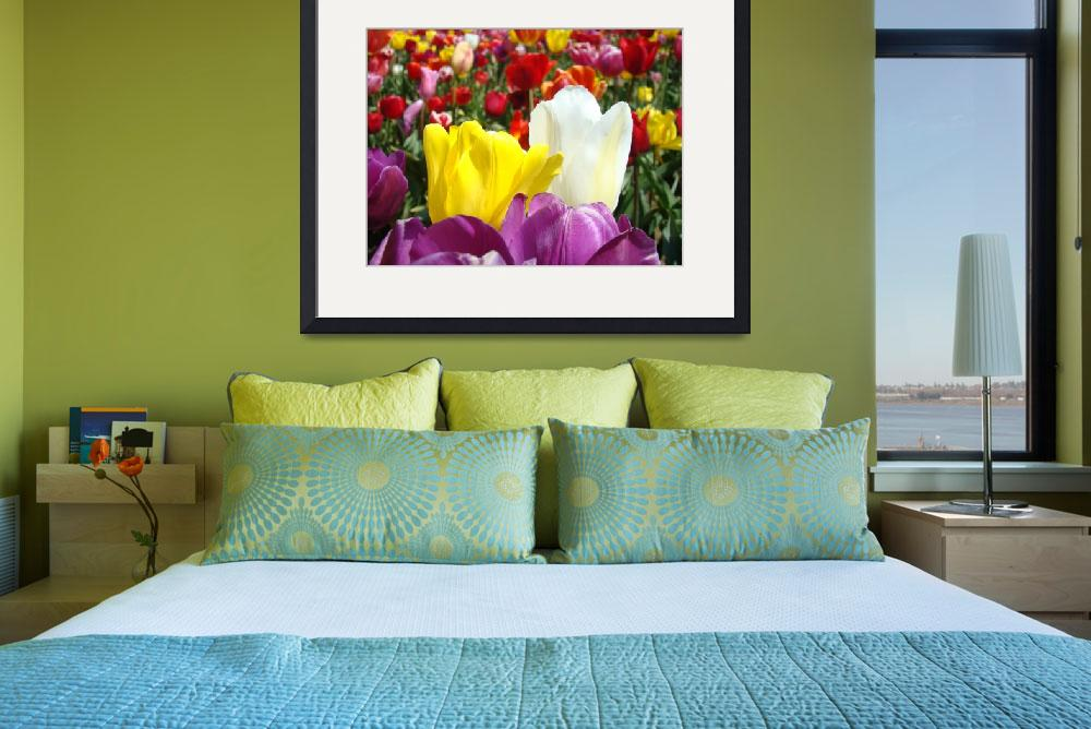 """Office art prints Colorful Tulip Flowers Garden&quot  (2011) by BasleeTroutman"