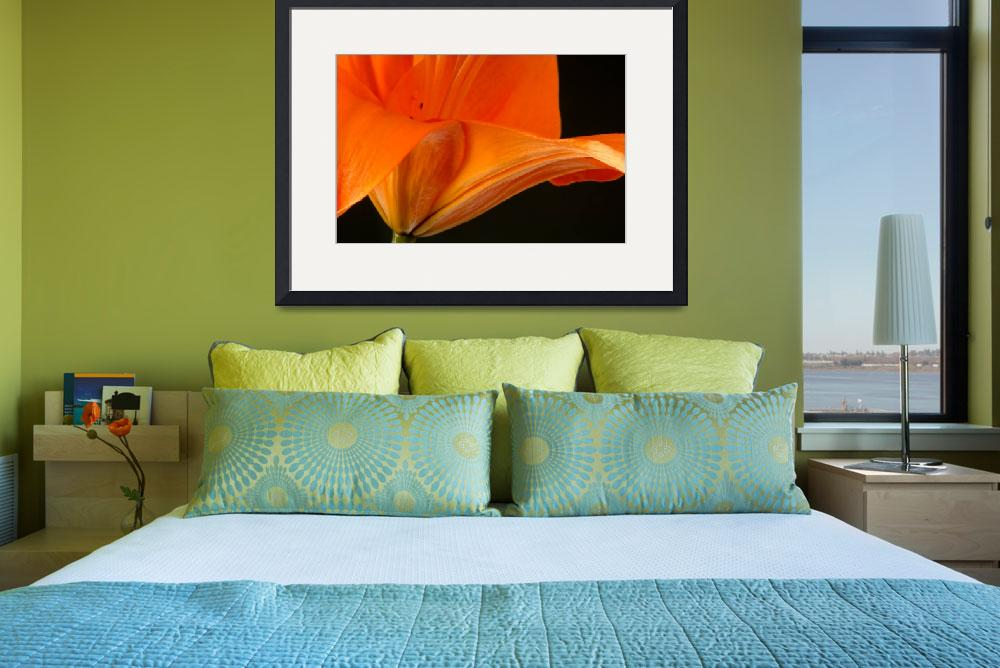 """""""Tangerine Lily""""  (2013) by boppintheblues"""